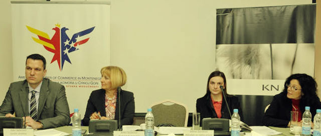 AmCham Montenegro Round Table Discussion With Deputy Minister Of Labor And Social Welfare
