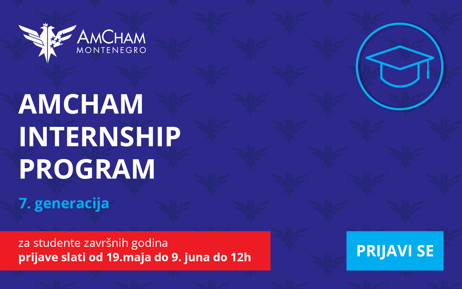 2017 AmCham Internship Program application terms and documentation required